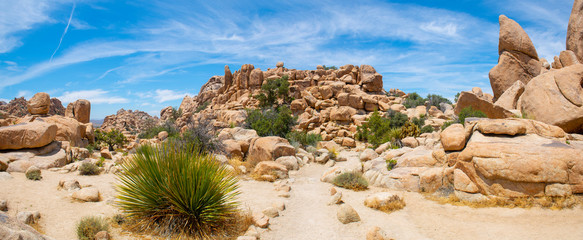 Mountain landscape panorama in Joshua Tree National Park near Yucca Valley, California CA, USA.