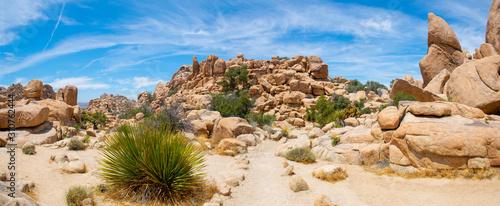 Valokuvatapetti Mountain landscape panorama in Joshua Tree National Park near Yucca Valley, California CA, USA
