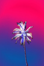 Palm Tree With Abstract Glitch...
