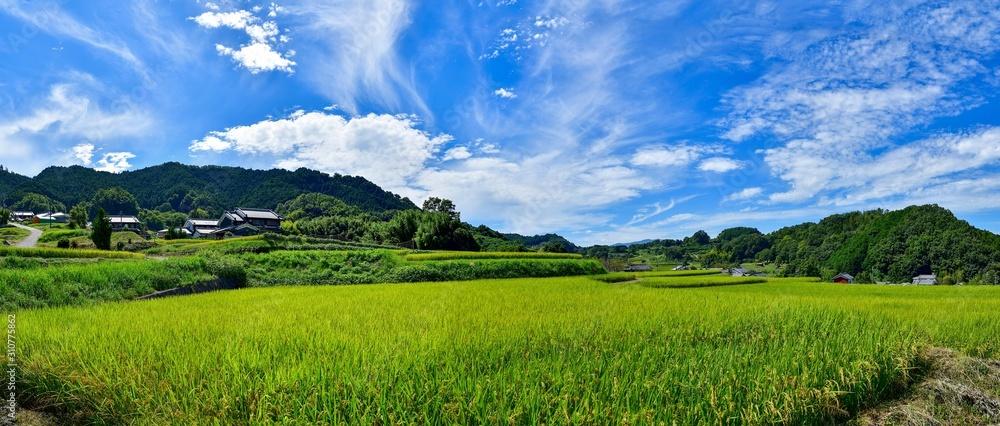 Fototapeta 明日香村の秋の情景@奈良