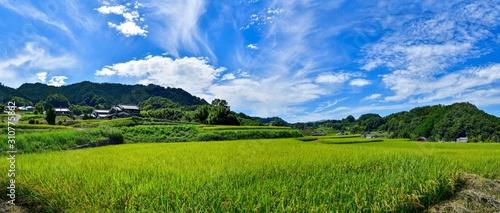 Fotografie, Obraz 明日香村の秋の情景@奈良