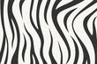 wild zebra texture