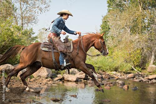 Fototapeta Western Creek Crossing obraz