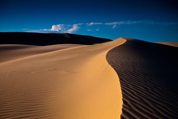 Sand rolls in the desert