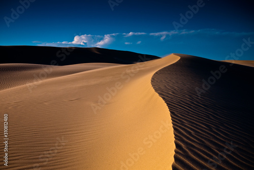 Fototapeta Piasek  sand-rolls-in-the-desert