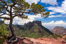 Big Bend National Park In A Su...