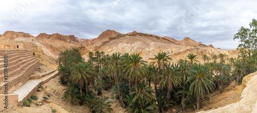 Beautiful green mountain oasis in Tunisia Fototapeta