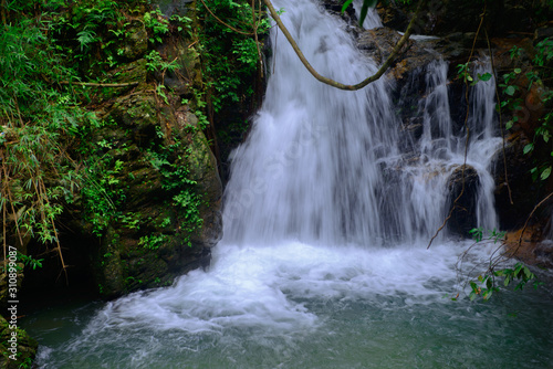 Beautiful streams and waterfalls in the forest in summer. Canvas Print