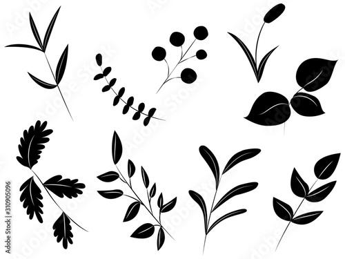Cuadros en Lienzo  白黒の植物(葉っぱ)のデザイン