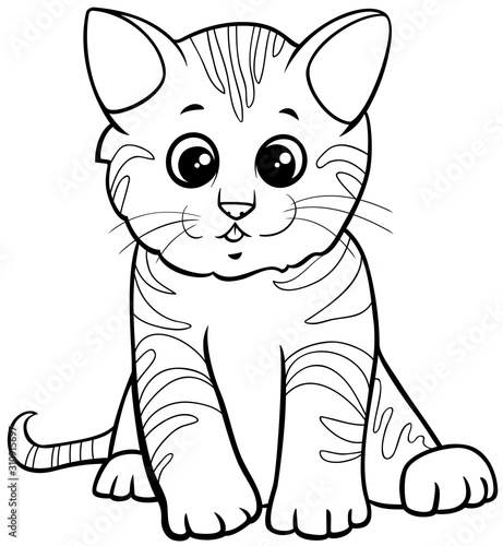 cute kitten cartoon character coloring book page