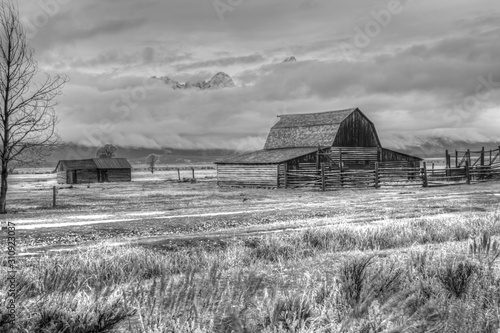 old barn in field black and white