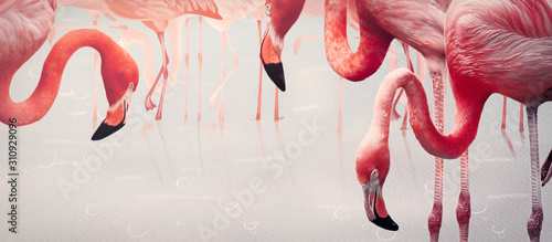 Fotografie, Tablou Flamingos. Design element, creative banner
