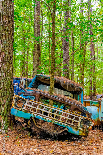 Wrecked Truck Against Tree Tablou Canvas