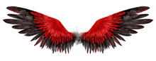 Beautiful Magic Red Black Wing...