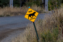Dog Crossing Road Sign