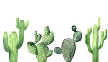 Watercolor Green Cactus Collec...