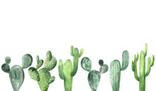 Watercolor Green Cactus Collection