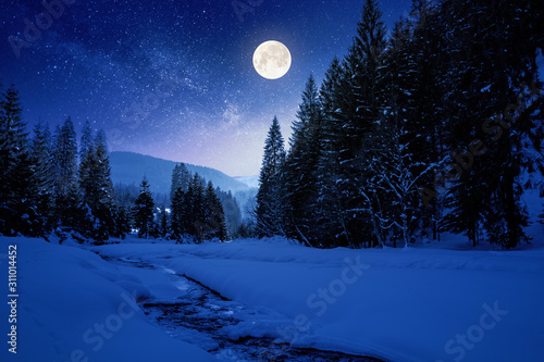 frozen and snow covered mountain river at night. carpathian winter landscape in full moon light light. spruce forest on the river bank