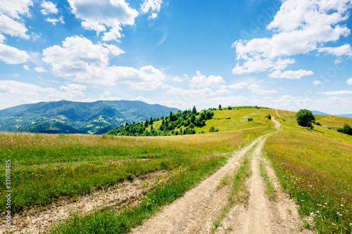 Obraz mountain rural landscape in summertime. country path winding off in to the distant ridge. rolling hills with grass fields and meadows. calm sunny weather with fluffy clouds on the blue sky - fototapety do salonu