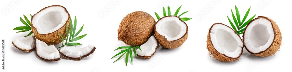 Fototapeta coconut with leaves isolated on white background. Set or collection