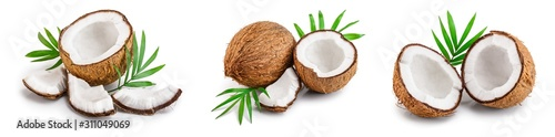 Obraz coconut with leaves isolated on white background. Set or collection - fototapety do salonu
