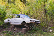 Abandoned Car In Green Forest