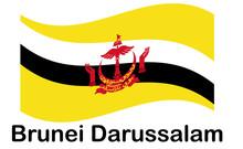 Brunei Darussalam Flag Button....
