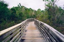 A Wooden Boardwalk Crossing Forest
