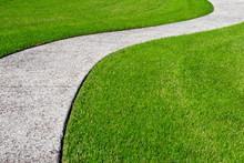 A Thick Carpet Of Zoysia Grass...