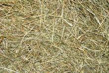 Background Of Straw