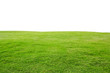 fresh green grass lawn isolated on white background
