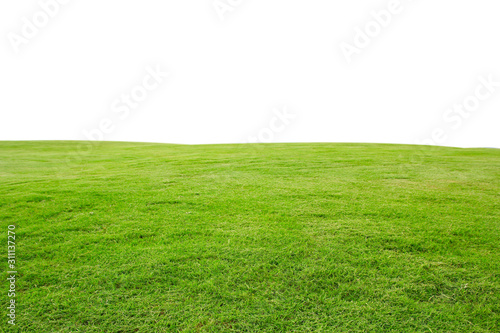 Fotografía fresh green grass lawn isolated on white background