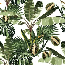 Tropical Exotic Plants, Palm Trees, Banana Tree Floral Seamless Pattern White Background. Exotic Jungle Wallpaper.