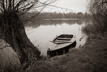 An Abandoned Rowing Boat Lies Moored On The Shore Of A Lake And Next To It Stands A Willow Tree