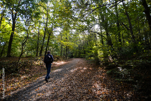 Fototapety, obrazy: young man walking in the forest