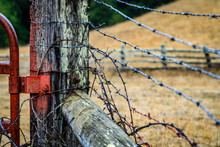 Barb Wire Tied Around A Fence ...