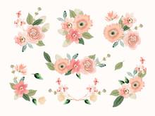 Peach Flower Arrangement Watercolor Collection