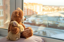 Pair Of Toys. Bunny And Teddy Bear  Embracing Loving Teddy Bear Toy And Bunny Sitting On Window-sill