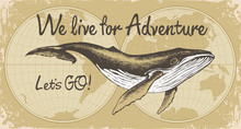 Vector Banner With Big Hand-drawn Whale On A Background Of World Map In Retro Style. Illustration On The Theme Of Travel, Adventure, Exploration And Discovery With Words We Live For Adventure, Lets GO