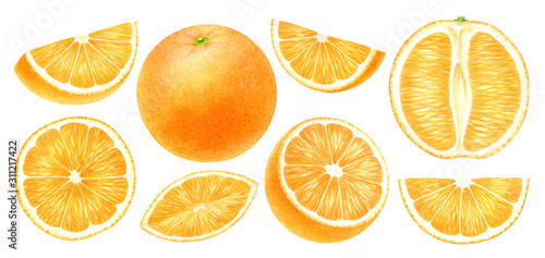 Fotomural  Orange fruits whole, half, slice, cut isolated on white background