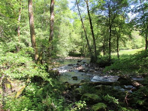 vue de ruisseau Tapéta, Fotótapéta
