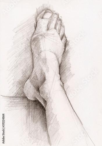 Sketch of foot Canvas Print