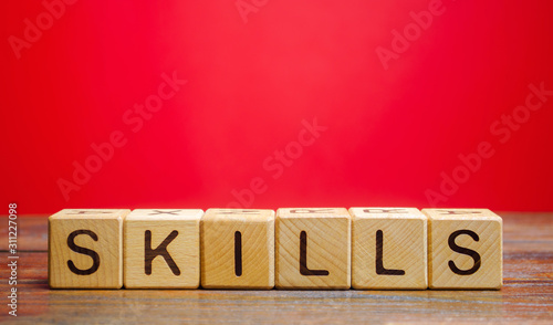 Photo Wooden blocks with the word Skills
