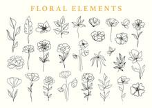 Floral Elements Set, Botanical...