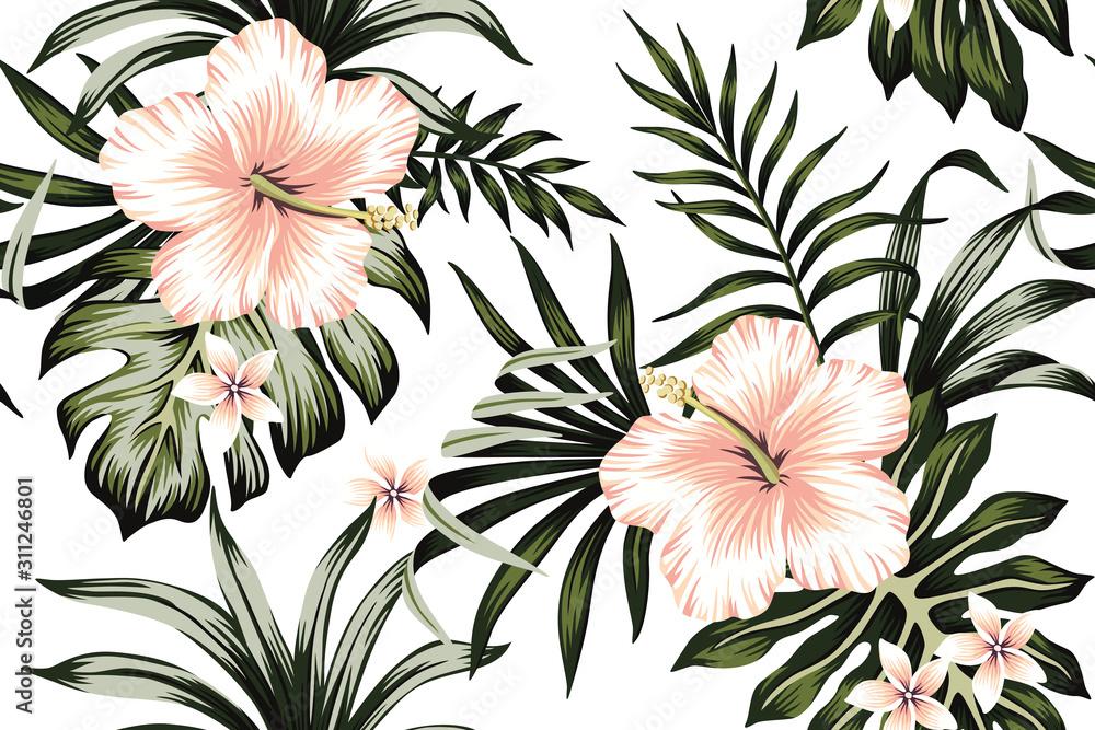 Fototapeta Tropical peach hibiscus and plumeria floral dark green palm leaves seamless pattern white background. Exotic jungle wallpaper.