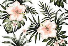 Tropical Peach Hibiscus And Plumeria Floral Dark Green Palm Leaves Seamless Pattern White Background. Exotic Jungle Wallpaper.