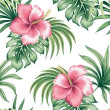 Tropical Vintage Pink Hibiscus...