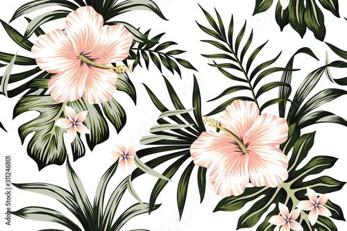 Fototapeta Tropical peach hibiscus and plumeria floral dark green palm leaves seamless pattern white background. Exotic jungle wallpaper. obraz