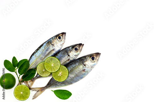 Vászonkép  Selar crumenophthalmus ,Bigeye scad ,fish with lemon and leaf isolated on white background,concept cooking background