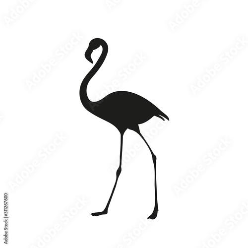 Flamingo bird silhouette. Tropical bird drawing. Vector